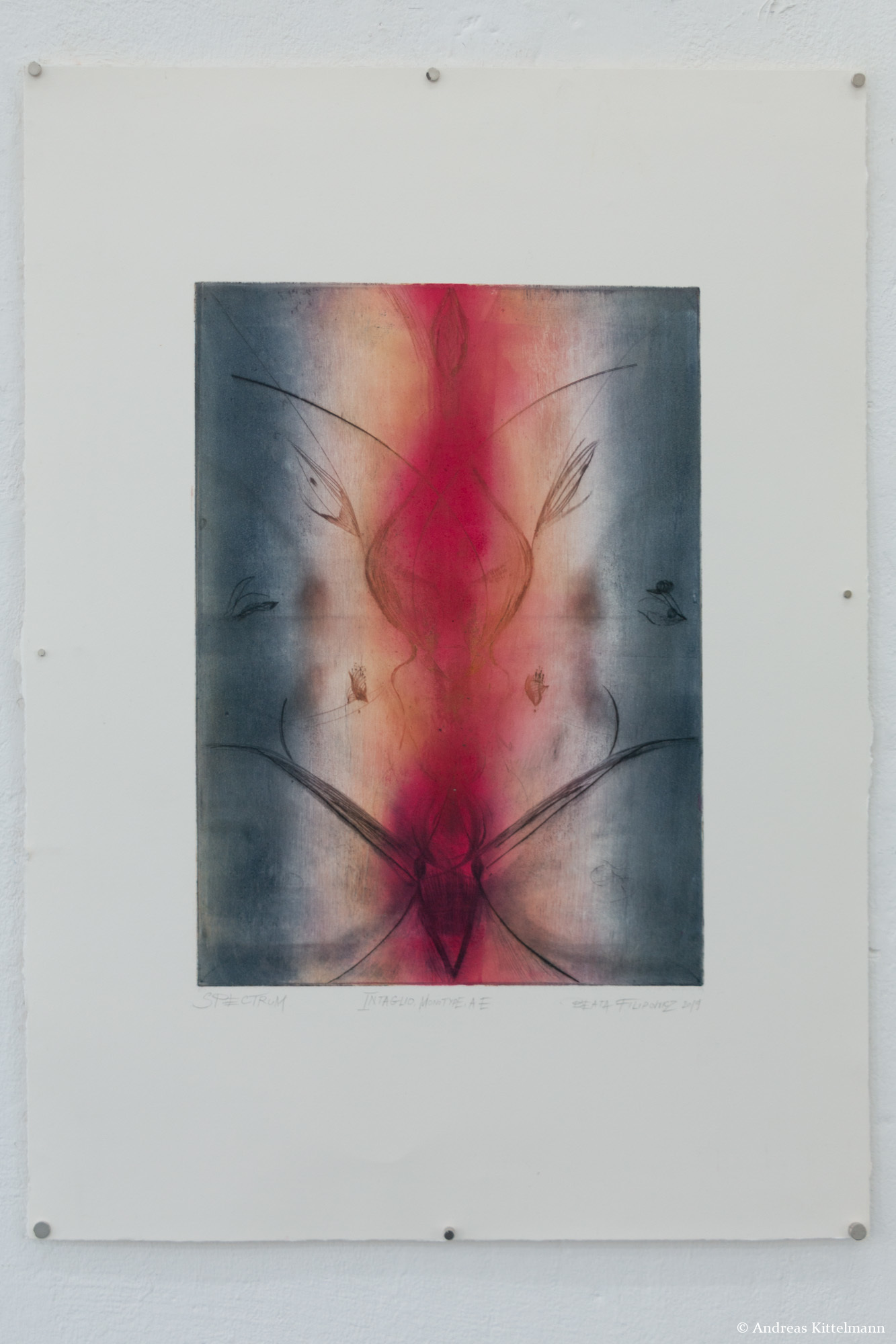 Beata Filipowicz, Body Spectrum, 2019, Intaglio: monotype, Author's Edition, 69 x 50 cm, aus der Serie BODY MATRICES